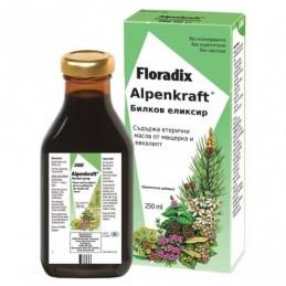 Floradix Alpenkraft 250ml