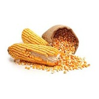 Био варива и зърнени